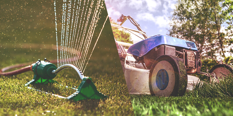 Vital aspects of lawn care